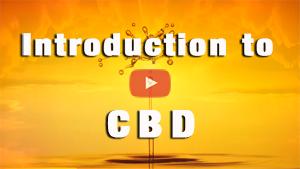 CBD Intro