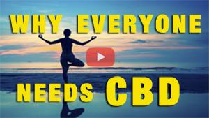 Why Everyone Needs CBD